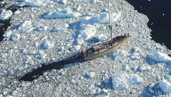 Pelagic Australis in ice.  Drone Picture by Dave Roberts.